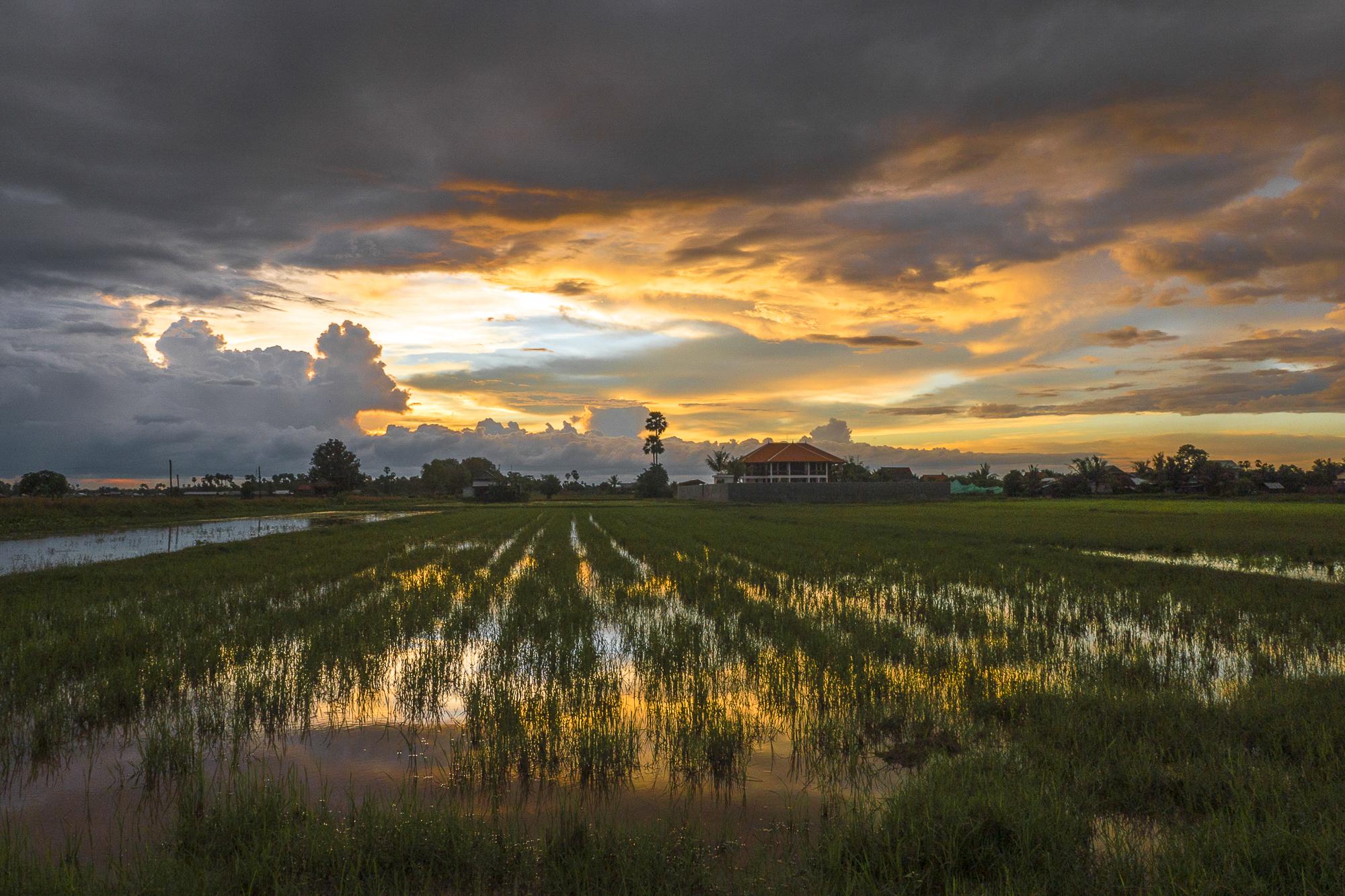 CAMBODIA_2015-27